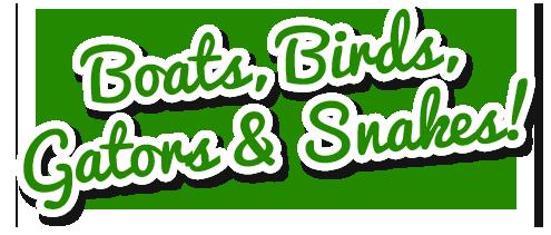 Boats, Bird, Gators and Snakes